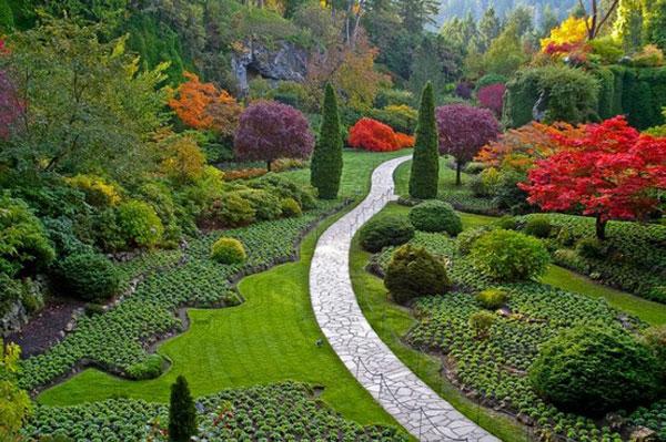แบบสวน การจัดสวน