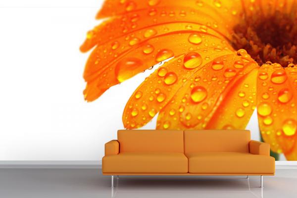 Wallpaper ผนัง ดอกไม้สีส้ม