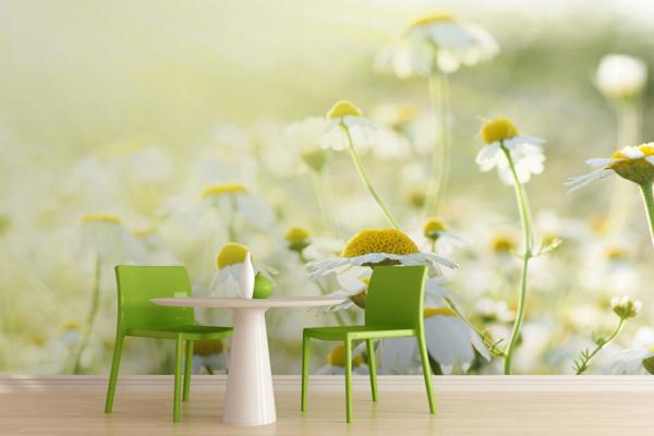 Wallpaper ผนัง ดอกหญ้า