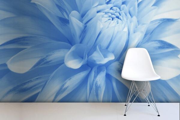 Wallpaper ผนัง ดอกไม้สีฟ้า