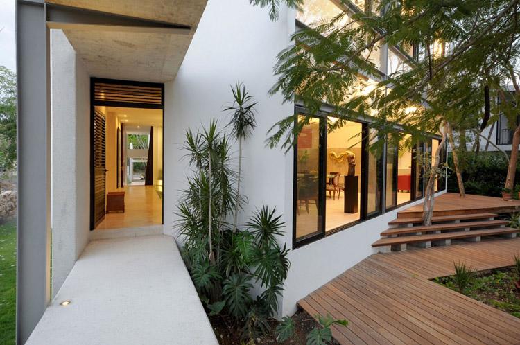 Tree in House - ต้นไม้ในบ้าน