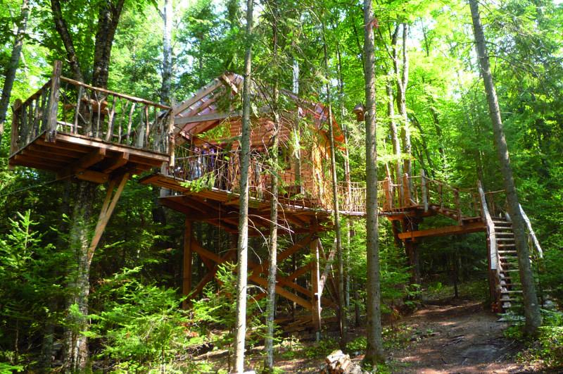 บ้านต้นไม้ สำหรับคนรักธรรมชาติ