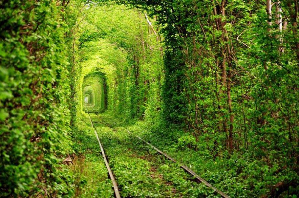 อุโมงค์แห่งความรัก (Tunnel Of Love)