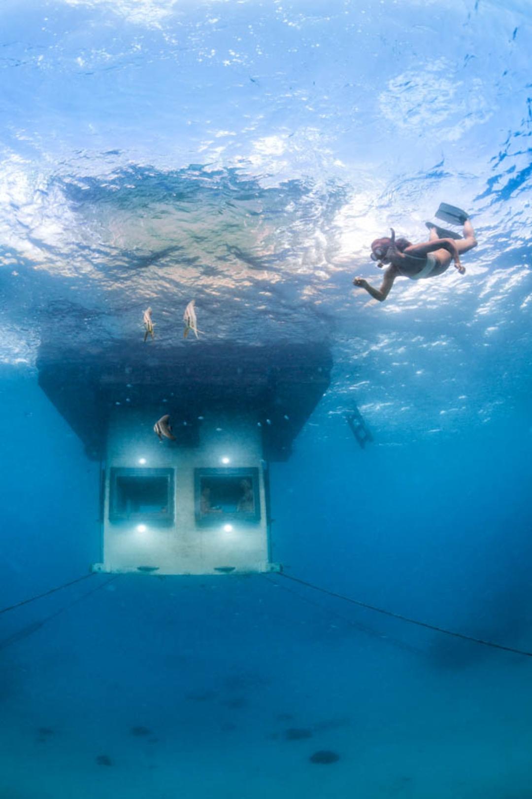 ห้องใต้น้ำ Underwater Room