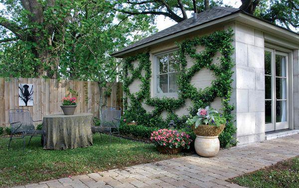 ไอเดียตกแต่งผนังบ้าน กำแพงบ้าน ด้วยสวนไม้เลื้อย
