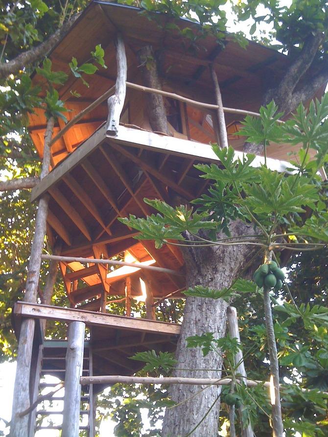 บ้านต้นไม้ ยกพื้นสูง บรรยากาศใกล้ชิดธรรมชาติ