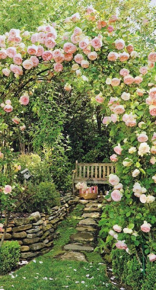 ม้านั่งในสวน