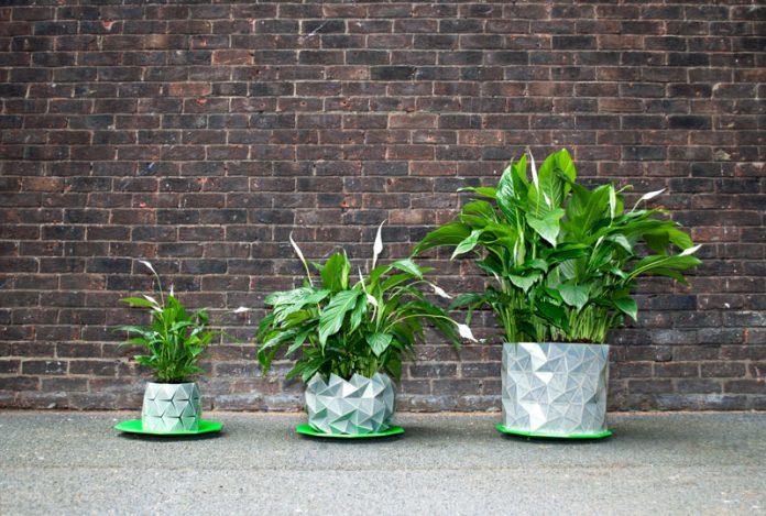 กระถางต้นไม้ ขยายเองได้ ตามการเจริญเติบโต