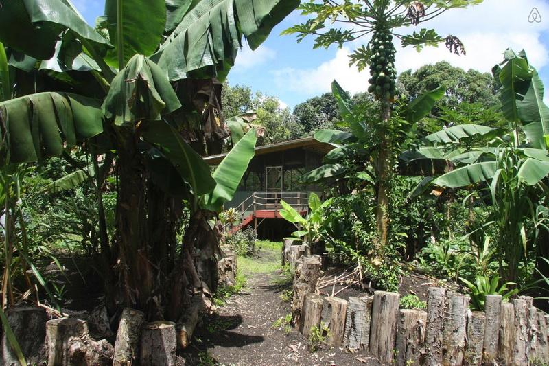 บ้านไม้ยกพื้น อยู่กับสวนผัก สวนครัว แบบพอเพียง