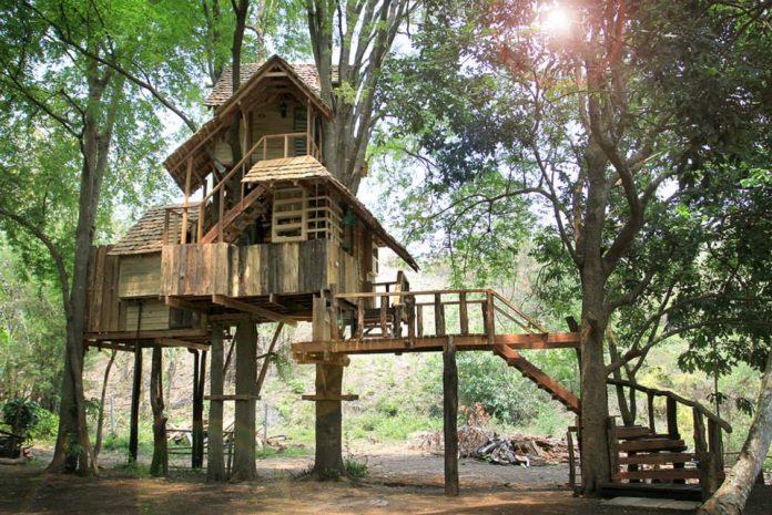 บ้านต้นไม้สูง 2 ชั้น (Treehouse)
