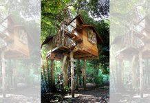 บ้านต้นไม้ ในป่าธรรมชาติ อยู่ติดลำธาร