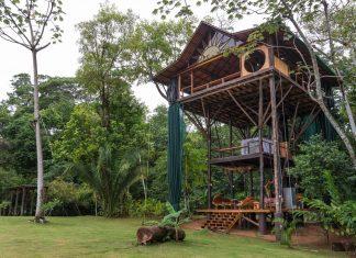 บ้านต้นไม้ สูง 3 ชั้น เปิดโล่งรับบรรยากาศธรรมชาติ เห็นวิวทะเล