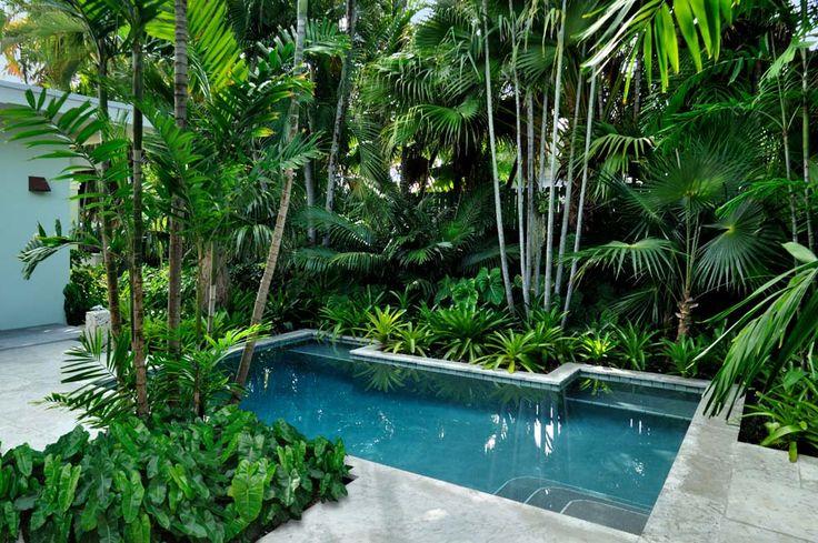 สระว่ายน้ำ ในบรรยากาศสวนสีเขียว ร่มรื่น เย็นสบาย