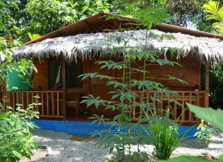 บ้านไม้กระท่อมหลังเล็ก มีระเบียง ชายคามุงจาก