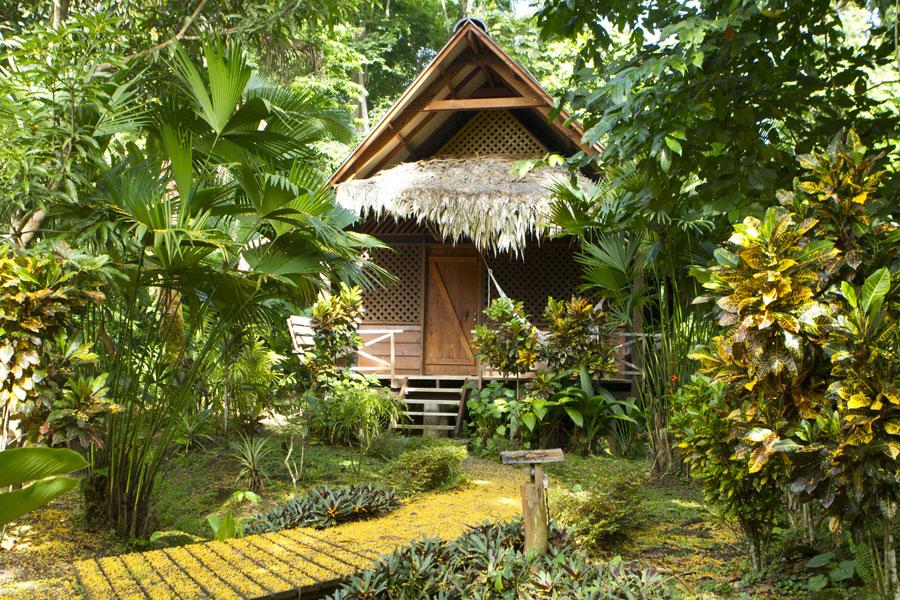 กระท่อมไม้ มีระเบียงด้านหน้าผูกเปลนอนชิลล์ๆ อยู่ในสวนธรรมชาติ