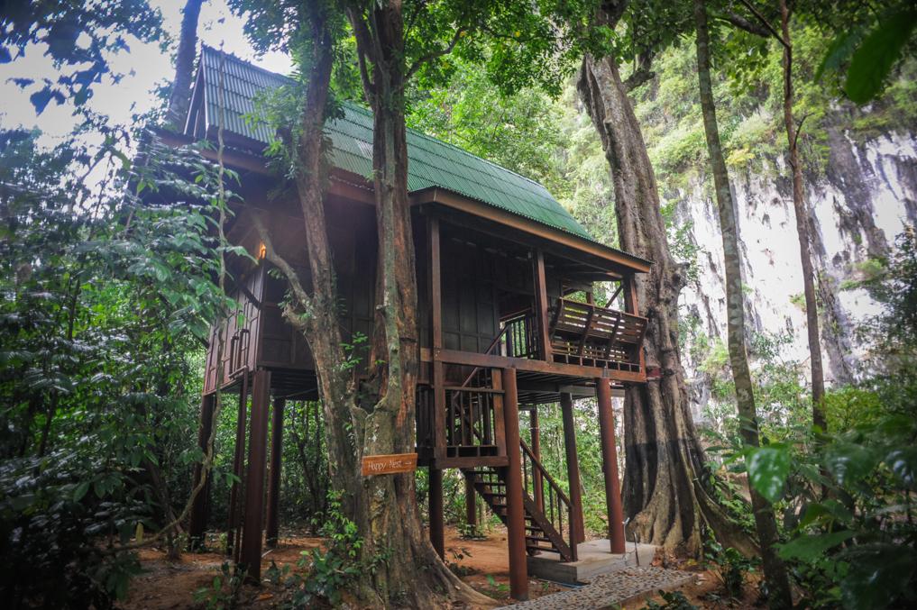 บ้านต้นไม้ยกพื้นสูง มีระเบียงชมวิวแบบใกล้ชิดติดธรรมชาติ ต้นไม้ ภูเขา และลำธาร จากเขาสก สุราษฎร์
