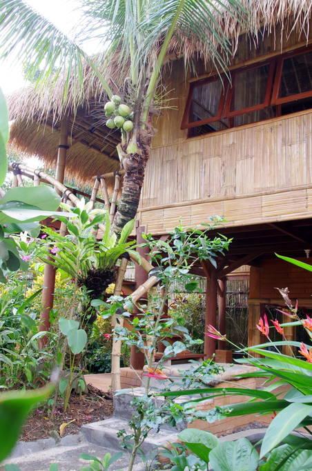 บ้านไม้ไผ่ยกพื้นสูง หลังคามุงหญ้าธรรมชาติ มีระเบียงไม้ชมวิวสวน