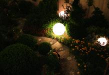 6 ทิปส์เด็ด เพิ่มแสงให้สวนสว่างสวย