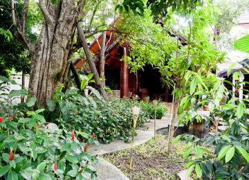 บ้านไม้สักร่วมสมัย มีสวนและต้นไม้ใหญ่ตกแต่งในสไตล์ทรอปิคอลร่มรื่นหน้าบ้าน