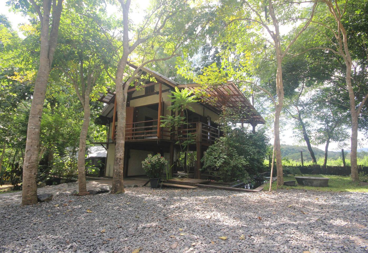 บ้านไม้ยกพื้น สงบร่มเย็น ล้อมรอบด้วยบ่อน้ำและต้นไม้สูง