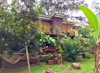 บ้าน ECO ผสมผสานการออกแบบที่ทันสมัยด้วยวัสดุที่หลากหลายอย่างเช่น คอนกรีต เหล็ก ไม้และตู้คอนเทนเนอร์