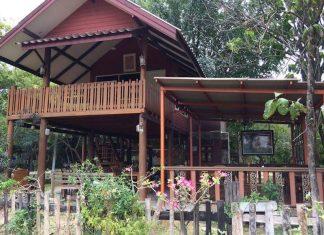บ้านไม้ยกพื้นสูง ต่อเติมชานไม้ข้างบ้าน ล้อมรอบด้วยบรรยากาศธรรมชาติ