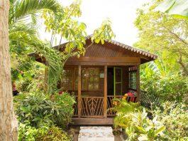 บ้านไม้กระท่อมหลังเล็ก มีระเบียงด้านหน้า ล้อมรอบด้วยสวนทรอปิคอล