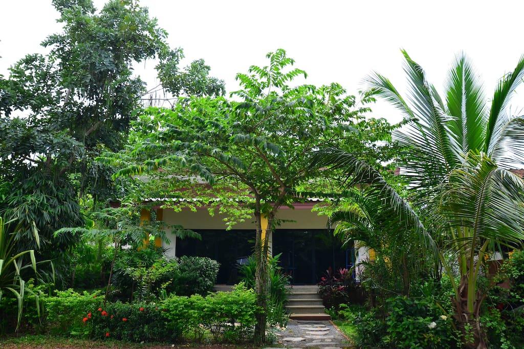 บ้านทรงโมเดิร์น มีเฉลียงหน้าบ้าน ปลูกต้นไม้ จัดสวนร่มรื่น