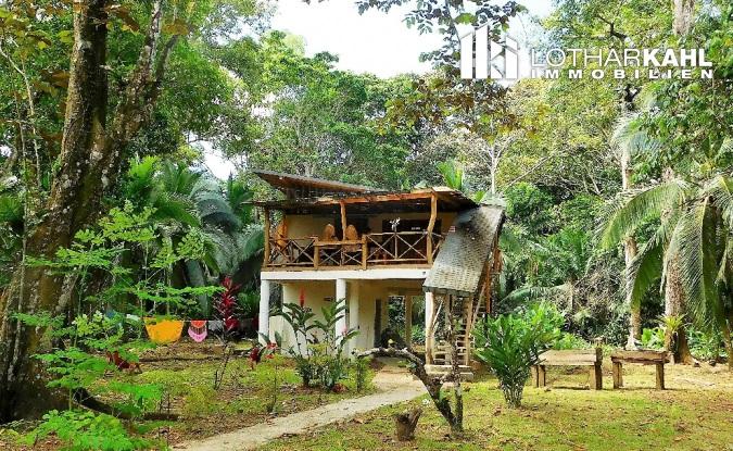 บ้านครึ่งปูนครึ่งไม้ยกพื้นสูง สไตล์คาริเบียน กลางสวนธรรมชาติแบบทรอปิคอล
