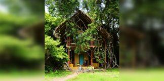 บ้านต้นไม้ มีระเบียงชมวิวชั้นบนและพื้นที่นั่งเล่นชั้นล่างพร้อมห้องน้ำเล็ก ๆ ส่วนตัว อยู่ในบรรยากาศร่มรื่น