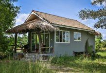 แบบบ้านสไตล์บังกะโล โมเดิร์นหลังเล็ก ชายคาระเบียงหน้าบ้านมุงหญ้าธรรมชาติ มีหน้าต่างกระจกใสบานใหญ่รอบด้าน