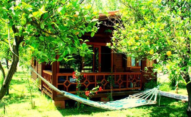 บ้านไม้รีสอร์ทยกพื้นหลังเล็ก มีระเบียงไม้ด้านหน้าเป็นพื้นที่นั่งเล่นพักผ่อน