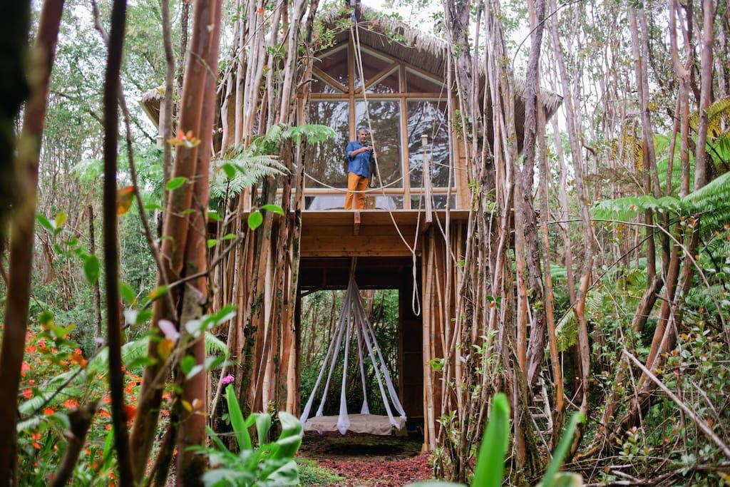 บ้านต้นไม้ยกพื้นสูง มีเปลนอนขนาดใหญ่ชั้นใต้ถุน อยู่ท่ามกลางป่าธรรมชาติ