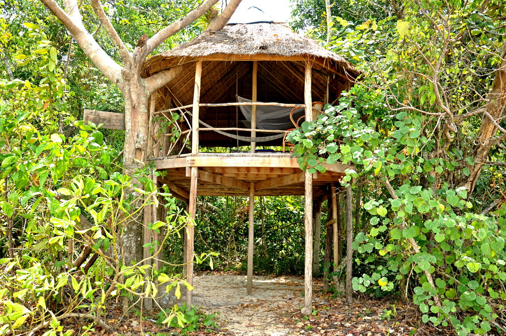 บ้านต้นไม้ยกพื้นสูง หลังคามุงจาก ผนังเปิดโล่ง นอนกางมุ้ง
