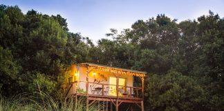 บ้านต้นไม้ ที่ล้อมรอบด้วยสภาพแวดล้อมที่เงียบสงบและเป็นธรรมชาติ ทำยกพื้นสูง มีระเบียงไม้ด้านหน้า