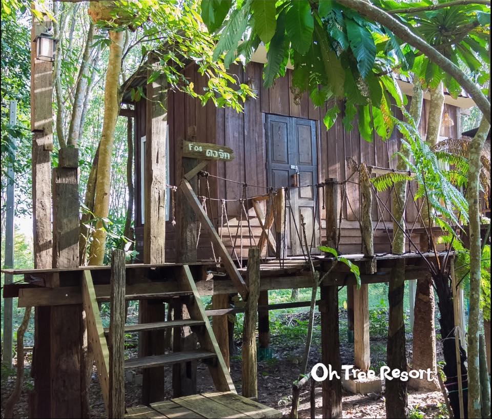 บ้านไม้ยกพื้นใต้ถุนสูง แบบไทยโบราณ บรรยากาศร่มรื่น