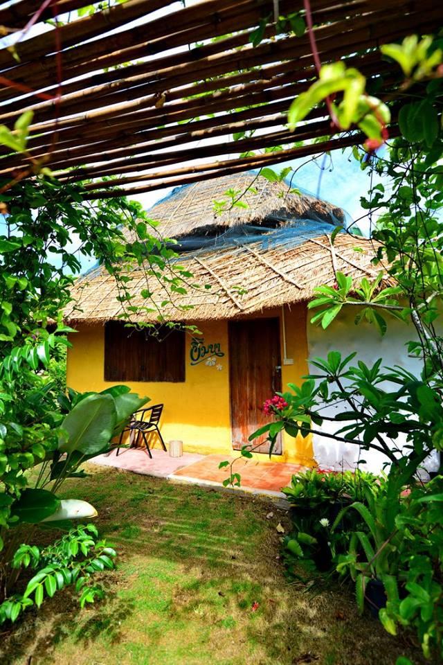 บ้านริมนา มุงหลังคาด้วยใบค้อ ฟาร์มสเตย์ ECO เป็นมิตรกับธรรมชาติ กับการท่องเที่ยวเชิงเกษตร มีกิจกรรมทำนา ปลูกผัก ตั้งอยู่ที่ อ.แม่ริม จ.เชียงใหม่