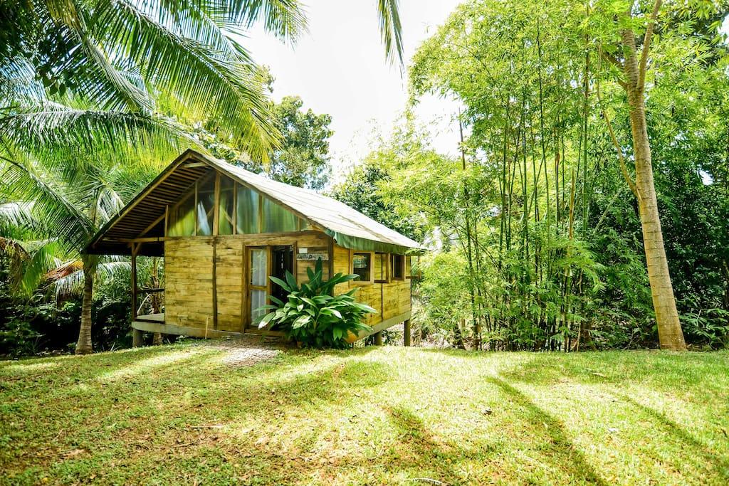 บ้านไม้ยกพื้น ตกแต่งภายในโปร่งโล่ง มีบรรยากาศธรรมชาติสวยงาม ต้นไม้ล้อมรอบ